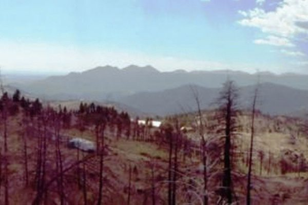 Four Miles Fire in Boulder, CO. Picture taken in 2012, two years after the fire (Photograph by Patricia Alexander)