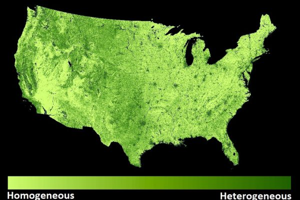 Map of habitat heterogeneity across the conterminous U.S., based on 30-m resolution standard deviation texture (21x21 moving window) of NDVI (index of vegetation greenness) from Landsat 8 imagery. Darker green areas indicate regions with higher habitat heterogeneity.